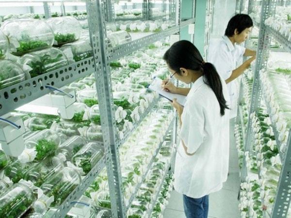 Đôi nét về Học viện Nông nghiệp Việt Nam