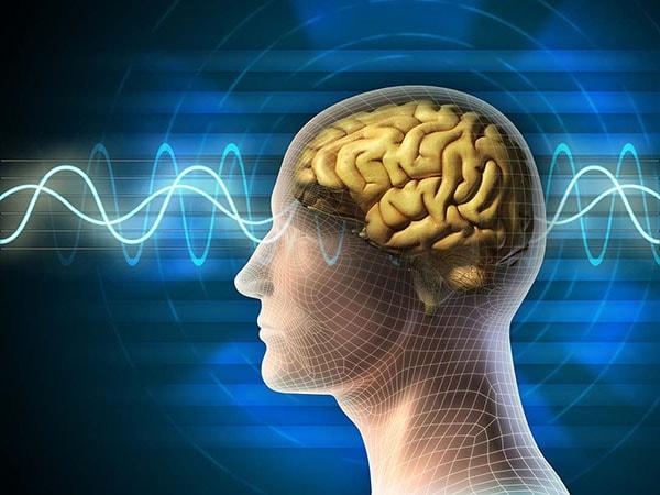 Tâm lý học- ngành học thú vị cho hiện tại và tương lai