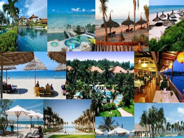 Vì sao bạn chọn theo học ngành du lịch?