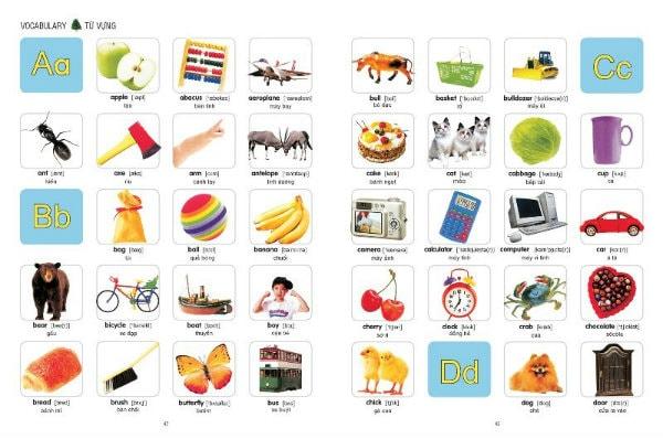 Những tấm thẻ học tiếng Anh như thế này giúp bé dễ dàng học từ vựng
